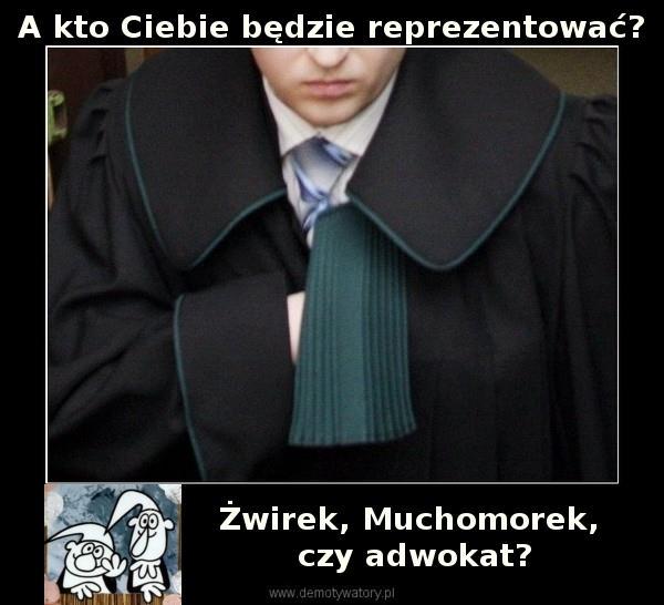 adwokat kto cie bedzie repr Żwirek czy Muchomorek