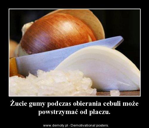 żucie gumy powstrzymuje płacz podczas obierania cebuli