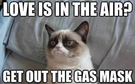 grumpy-cat-love-is-in-the-air