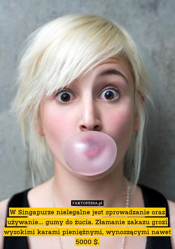 guma do żucia zakazana w Singapurze