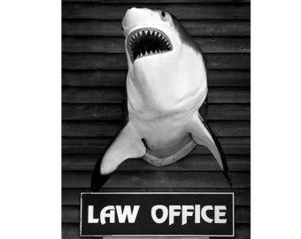law officeil_340x270.292354507