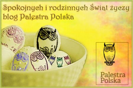 Jajka sowa