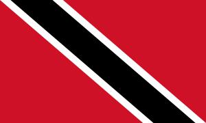 Flaga TT