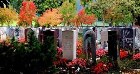 cmentarz 1