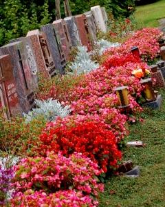 cmentarz 5