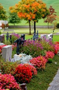 cmentarz 6