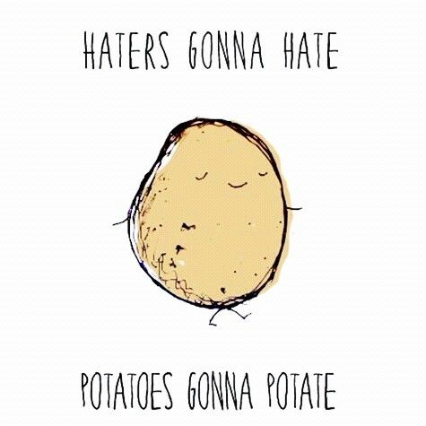 haters-gona-hate